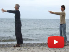 Die Wildgans am Meer - Video